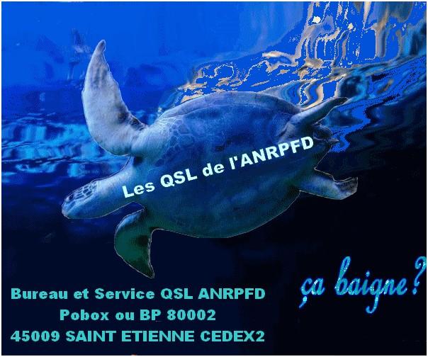 QSL-Tortue-Bleue